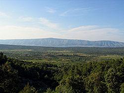 Starigradsko polje hvar.jpg