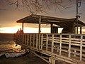 Starr-081230-0757-Tamarix aphylla-habit with Forest and Kim at sunset-Honokanaia-Kahoolawe (24834073261).jpg