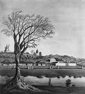 Early Streets of Brisbane - Early drawing of a section of the town of Brisbane, Queensland including the Convict Hospital, 1835