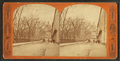 State House, from Robert N. Dennis collection of stereoscopic views 3.png
