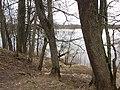 Stelmužė 32295, Lithuania - panoramio (20).jpg