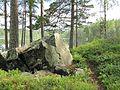 Sten bredvid stigen vid Vatebosjön - panoramio.jpg