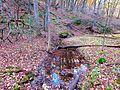Stephen's Creek - panoramio (2).jpg