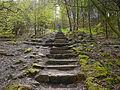 Steps on Otley Chevin.jpg