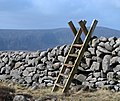 Stile over the Mourne Wall, Slievenaglogh - geograph.org.uk - 1205574.jpg