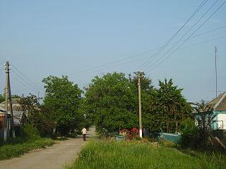 Timashyovsky District District in Krasnodar Krai, Russia