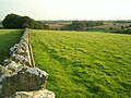 Straight Cotswold stone wall - geograph.org.uk - 240836.jpg