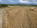 Straw bales in the South Hams - geograph.org.uk - 228041.jpg