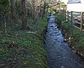 Stream, Ashburton - geograph.org.uk - 1200965.jpg