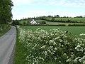 Stubby Hill - geograph.org.uk - 466753.jpg