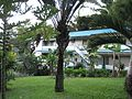 Sub-tropical gardens at Wild Ginger Hotel - panoramio.jpg