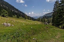 Sulzkar Valley, Gesäuse National Park, Ennstaler Alpen, Austria 04.jpg