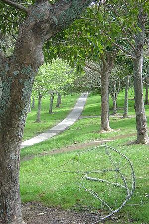 Sunnynook, New Zealand - Image: Sunnynook Park in Spring