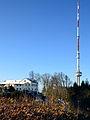Swisscom Fernsehturm - Uetliberg Uto 2013-11-27 14-46-20.JPG