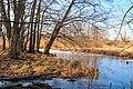 Tůně u Bohdanečského rybníka 05.jpg