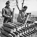 THE BRITISH ARMY IN ITALY 1945 NA22473.jpg