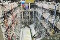 TPE-SSSH Leoshi Fly 20150602a.jpg