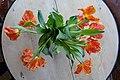 TULIPS orange (red yellow) open flower petals, in vase on table (oransje, åpne tulipaner i vase på bord) Norway 2019-02-13.jpg