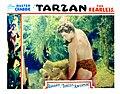 TarzanFearless3.jpg
