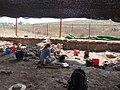 Tel Shimron - Archaeological excevation June 2017 (16).jpg