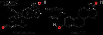 anti aromatase steroids