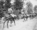 The Battle of Messines, June 1917 Q5490.jpg