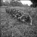 The British Army in the United Kingdom 1939-45 H15207.jpg