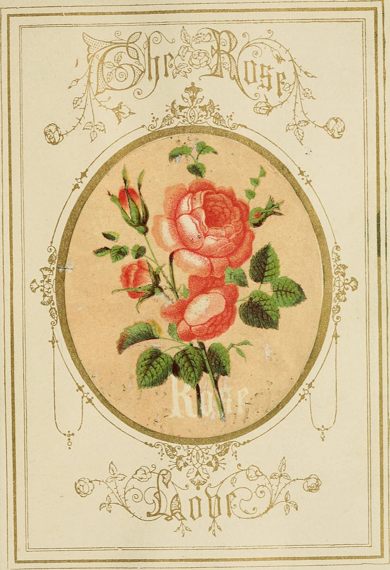 The Language of flowers - an alphabet of floral emblems (1857) (14560539118).jpg