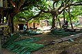 The Making of Thatch, Nigeria Photo 9.jpg