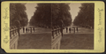 The Mall in Central Park, N.Y, from Robert N. Dennis collection of stereoscopic views.png