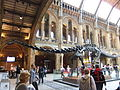 The Natural History Museum, London - DSCF0386.JPG