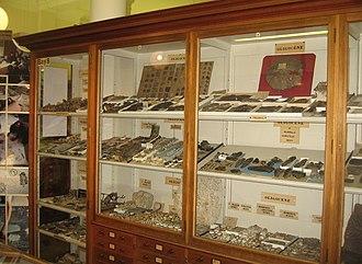 Sedgwick Museum of Earth Sciences - The Oligocene period