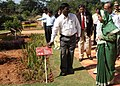 The President, Smt. Pratibha Devisingh Patil at the inauguration of the Herbal Garden at Rashtrapati Nilayam, Bollaram, in Hyderabad on December 25, 2010.jpg