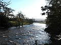 The Wharfe at Bolton Abbey - geograph.org.uk - 1043696.jpg