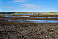 The head of Loch Dunvegan at low tide - geograph.org.uk - 808114.jpg