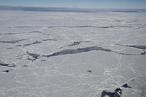 Antarctic sea ice - Ice in the Bellinghausen Sea off the coast of Antarctica. Note aircraft shadow.