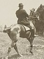 Theodore Roosevelt, on horseback, rear view LCCN99471936 (cropped).jpg