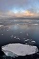 Thin Ice (4371017418).jpg