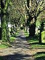 Tottenham Cemetery footpath, Haringey, London, England 3.jpg
