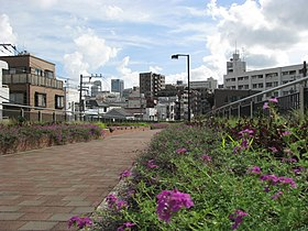 Toyoko Flower Green way -01.jpg