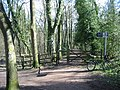 Tracks and signpost in Ecclesall Woods - geograph.org.uk - 373071.jpg