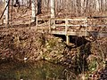 Trail 2 PB250216.jpg