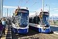 Trams de Genève (Suisse) (6488368269).jpg