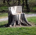 Tree stump, Hatfeild Hall golf course - geograph.org.uk - 1232870.jpg
