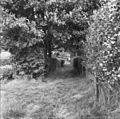 Tussen 12 en 13, dorpsgezicht - Loon - 20142146 - RCE.jpg