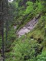 Tux - Naturdenkmal ND 9 39 - Umgebung der Schraubenfallhöhle - VI.jpg