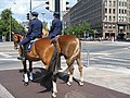 Two mounted police officers in Helsinki.jpg