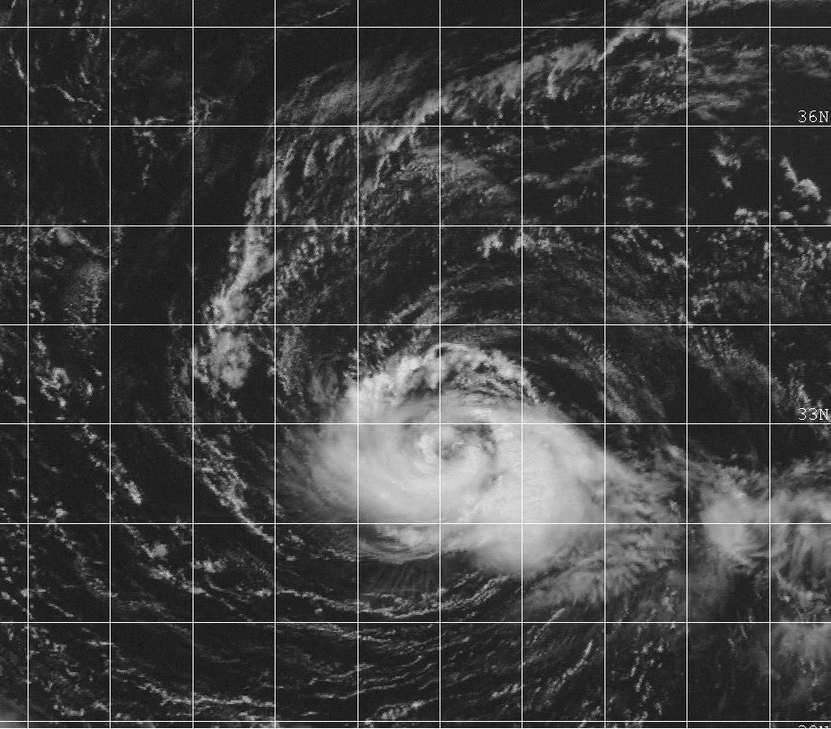 Typhoon Tanya 1999