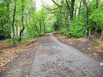 Upper Don Walk - The walk has been surfaced in Beeley Wood.