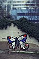 Urban Butterfly (65599335).jpeg